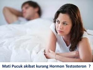 mati-pucuk-akibat-kurang-hormon-testosteron